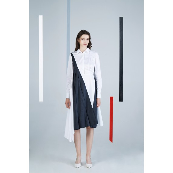Timformation Black and White Dress