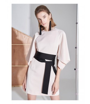 AlternaSenses Pink Dress with Black Belt