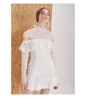 IcyNude Stand Collar Lace Dress